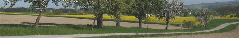 Veranstaltungen - St. Marienkirchen an der Polsenz